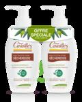 Acheter Rogé Cavaillès Hygiène intime Soin naturel Toilette Intime Sécheresse 2Fl/250ml à Bordeaux