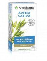 Arkogélules Avena Sativa Gélules Fl/45 à Bordeaux
