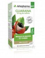 Arkogélules Guarana Bio Gélules Fl/45 à Bordeaux