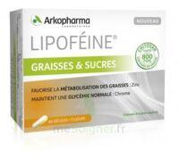 Lipofeine Graisse Et Sucres Gélules B/60 à Bordeaux