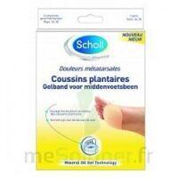 Scholl Coussin Plantaire Douleurs Métatarsales T2 à Bordeaux