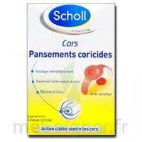 Scholl Pansements Coricides Cors à Bordeaux