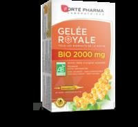 Forte Pharma Gelée Royale Bio 2000 Mg Solution Buvable 20 Ampoules/15ml à Bordeaux