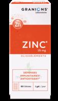 Granions Zinc 15mg Gélules B/60 à Bordeaux