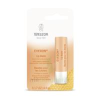 Weleda Soin Des Lèvres Everon® 4,8ml à Bordeaux